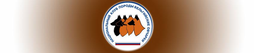 Национальный клуб породы Бельгийские овчарки